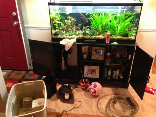 fluval 306 cleaning